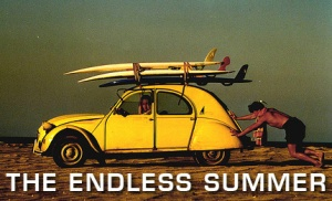 The Best Travel and Adventure Movies -- The Endless Summer