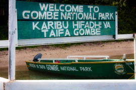 "alt=""Gombe Stream Reserve, Tanzania"""