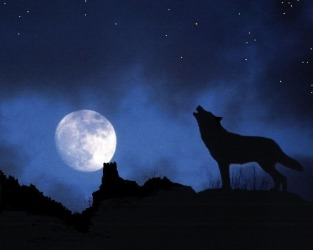 """""""The Wolf Moon"""", the 1st Full Moon after the Winter Solstice"""