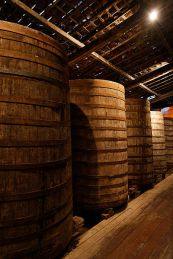 Barrels of Cachaça
