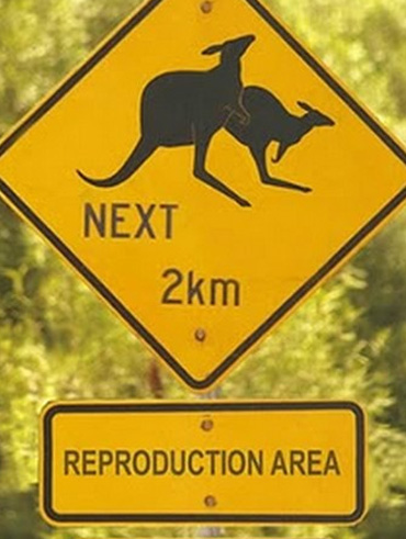 Australia, of course.