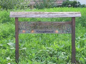 A sign advertising home-made Marillenschnaps in Austria. (Courtesy of Wikipedia Commons)