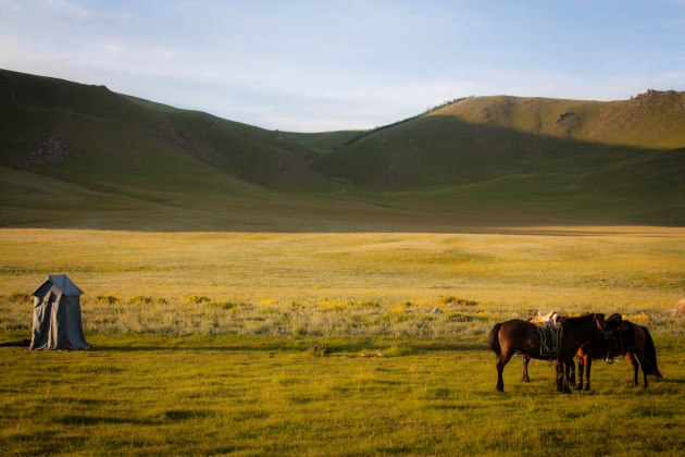 Mongolian horses next to squat toilet in Western Mongolia