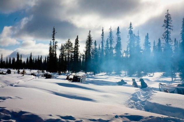 Arctic wilderness -- Lapland, Sweden