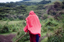 Walking with the Massai, Northern Tanzania