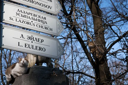 Furry friends guarding grave sites in the Tikhvin Cemetery in St. Petersburg, Russia.