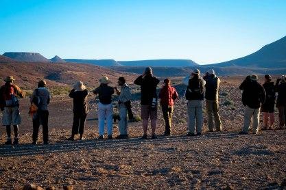 Traveling friends spotting desert wildlife