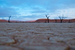 View of Dead Vlei from my outstretched position on the ground. #Namibia