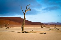 Sunrise at the world's oldest desert: Namib Desert