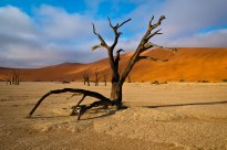 Sunrise at Dead Vlei in Namibia