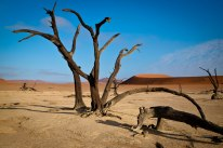 Best photo spots on Earth: Namibia, southwestern Africa