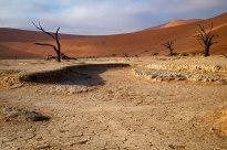 The sun rises on Dead Vlei in the world's oldest desert: The Namib Desert, Namibia, Africa