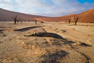 The world's best places for photographers: Dead Vlei, Namibia