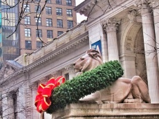 'Fortitude' the lion outside of The New York Public Library (not shown, his counterpart, 'Patience')