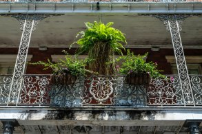 More beautiful railings in New Orleans