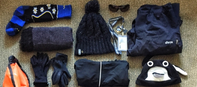 What to wear on a polar expedition? Layers!