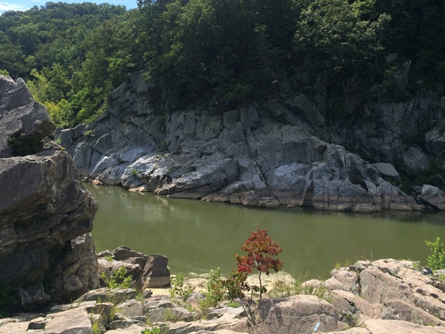 Billy Goat Trail at the foot of the scrambles