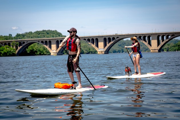 Paddlers on the Potomac River