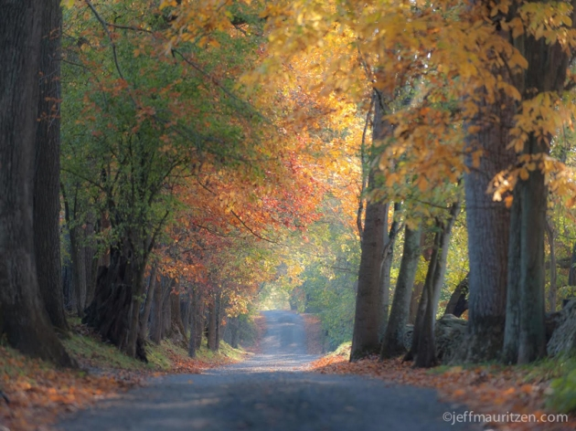 """Fall in DC and Virginia is one of my favorite times of year behind the lens,"" Mauritzen says. (Credit: Jeff Mauritzen)"