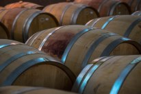 Wine-stained french oak barrels