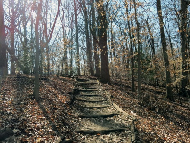 Rock-Creek-Park_860x645_02