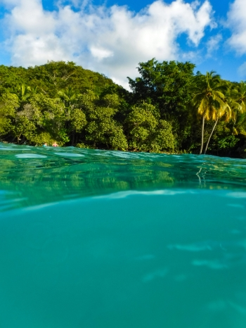 Virgin Islands National Park lives on a paradise Island... St. John. Image credit: Jonathan Irish
