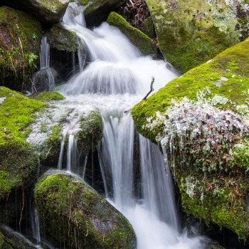 Waterfalls galore at the Great Smoky Mountains National Park